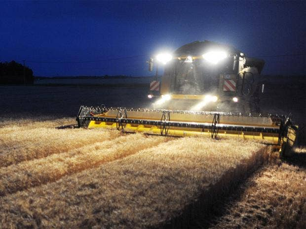 pg-12-cereal-harvests-getty.jpg