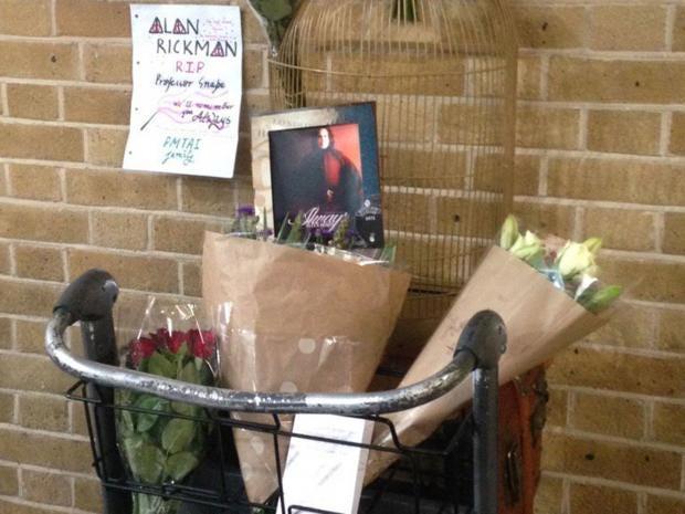 Alan-Rickman-Snape.jpg