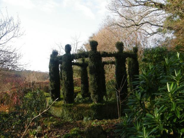 Anna-Pavord-garden.jpg