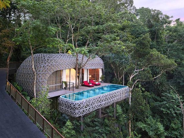 treehouse-thailand.jpg