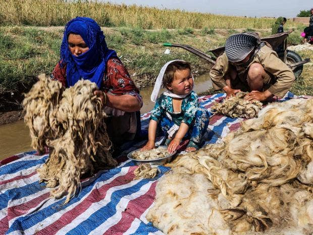 27-Afghan-wool-industry-EPA.jpg