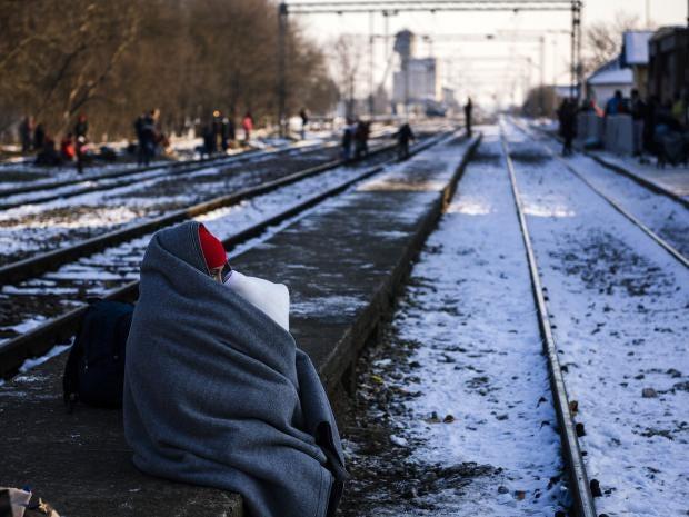 refugee-serbia.jpg