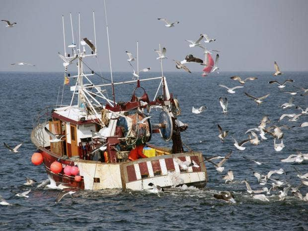 16-fishing-boat-afpget.jpg