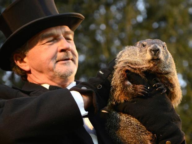 groundhog-reuters2.jpg