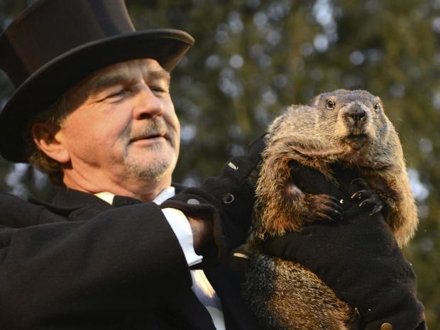 phil-groundhog.jpg