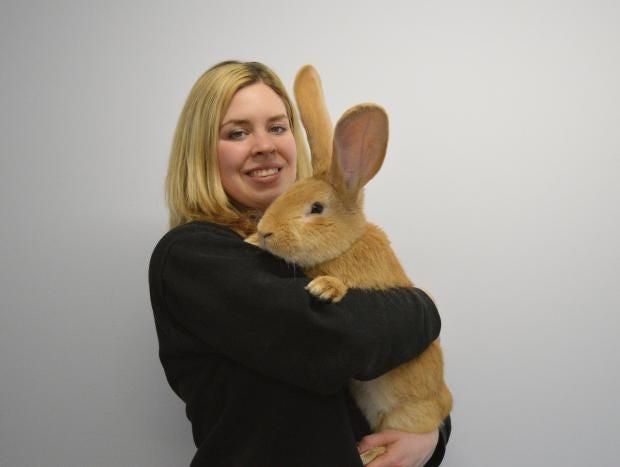 Animal-Care-Assistant-Emma-Calder-with-Atlas.jpg