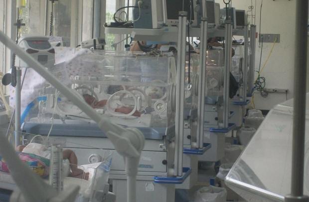 incubators.JPG