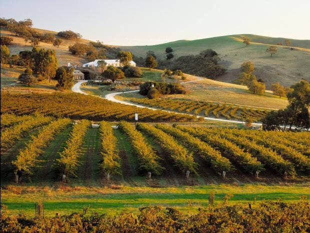 Barossa-Valley-Corbis.jpg