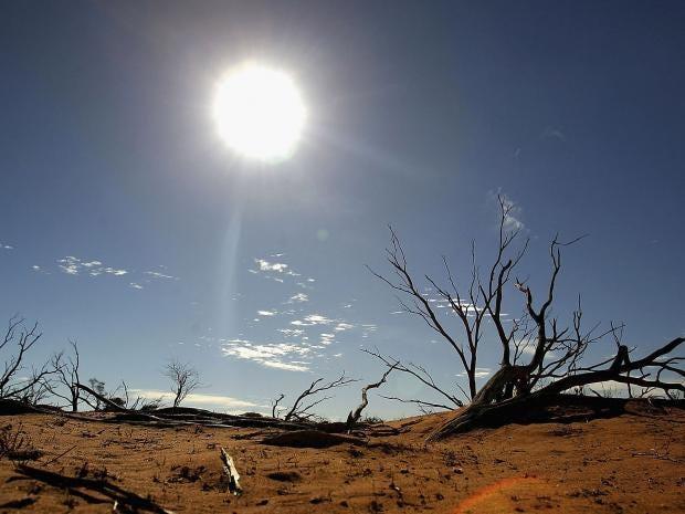 Australian-outback.jpg