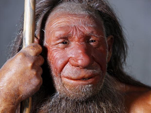 18-neanderthal-rex.jpg