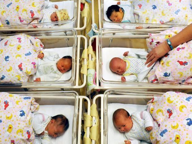 Newborn-babies-hospital.jpg