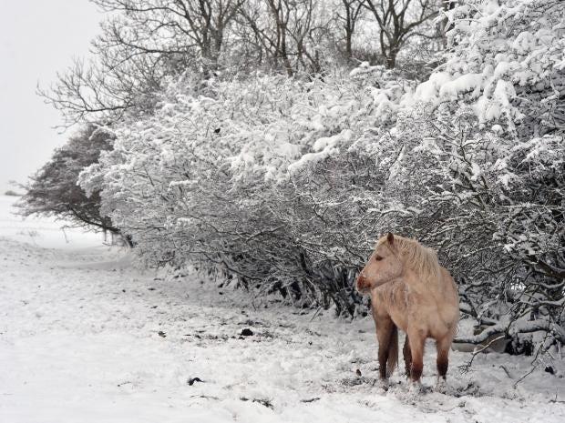 uk-snow-1.jpg