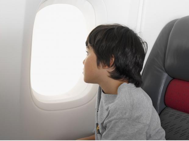 10-plane-passenger-rex.jpg