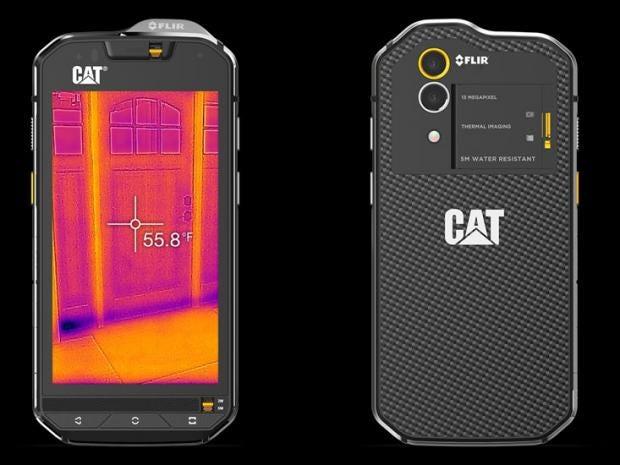 cats60.jpg
