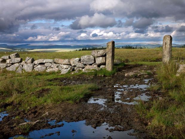 Dartmoor-Alamy.jpg