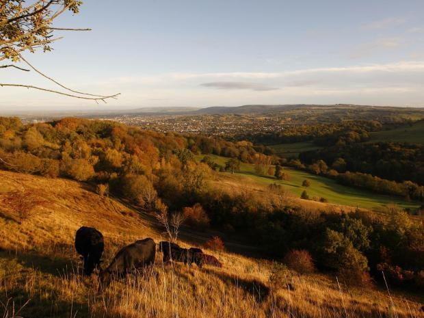 British-countryside.jpg