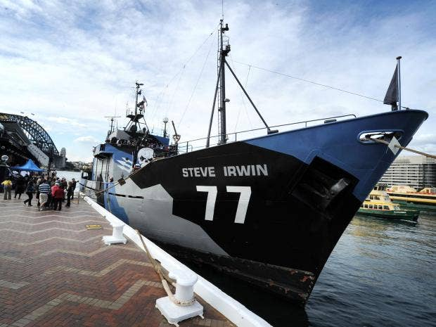 Sea-Shepherd-Getty.jpg