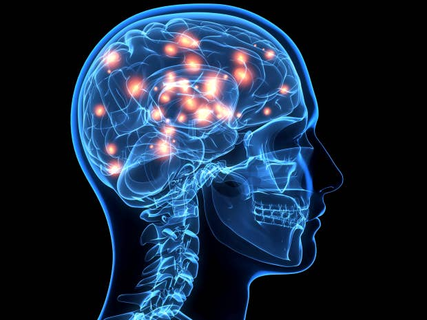 teenage brain research paper Work, and it was under its auspices that the paper  important new research on  adolescent brain devel-  about the teenage brain tell us about our kids, by.