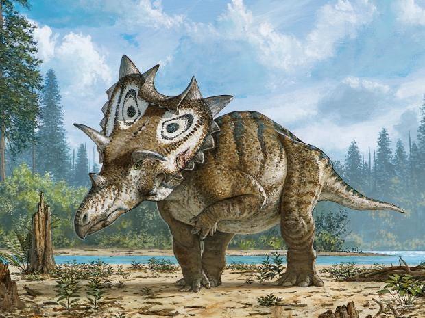 new-dinosaur-montana.jpg