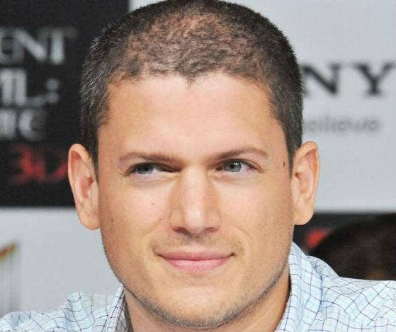 """wentworth sex personals After """"prison break"""" star wentworth miller, age 41, came out as gay wednesday in an open letter addressed to russia declining an invitation over that nation's anti-gay law, luke mcfarlane is now making headlines as his rumored boyfriend """"wentworth and luke have been secretly dating for ."""
