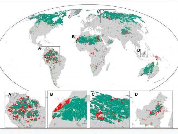 We've Destroyed One-Tenth of the World's Wilderness Since 1990