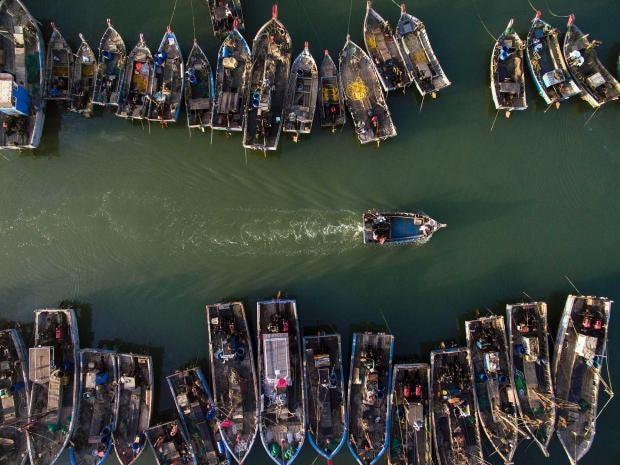 china-fishing.jpg