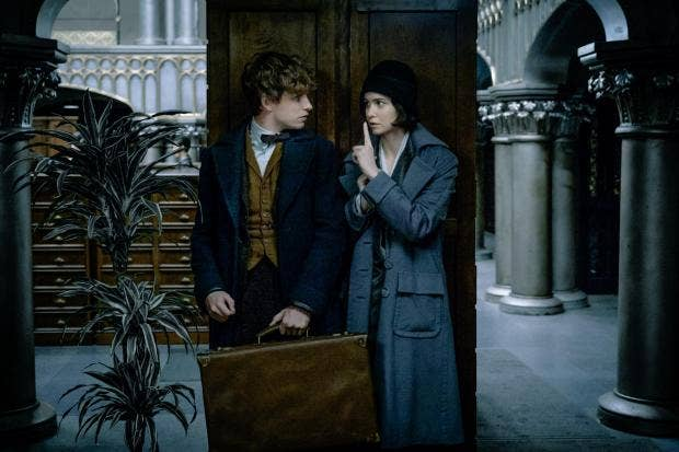 fantastic-beasts-katharine-waterston.jpg