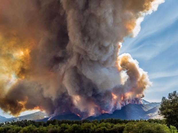 forestfire-0.jpg