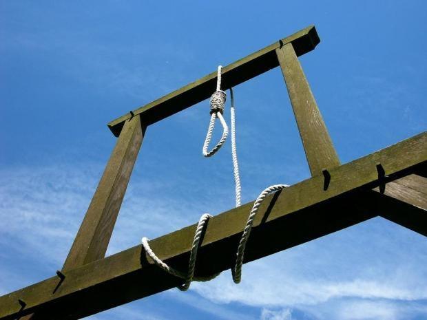 hanging.jpg