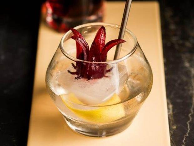 cocktial-hibiscus-spritz-1.jpg