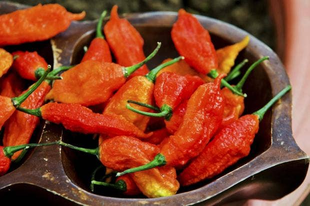 Chilli Eating Challenge Burns Hole In Man's Oesophagus