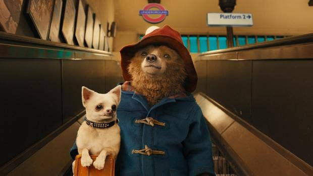 Paddington 2 starts filming as Hugh Grant and Brendan Gleeson join cast