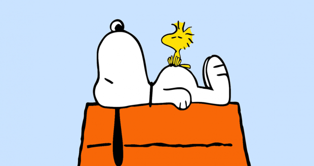 Snoopy and charlie brown 39 s owners are considering putting - Charlie brown bilder ...
