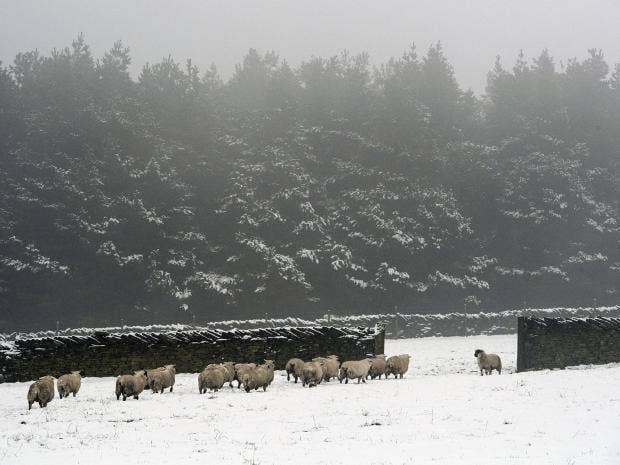 Met Office issues possible snow warning