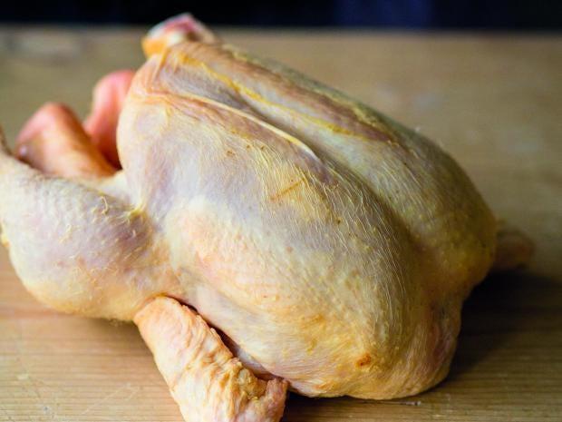 chicken-1.jpg