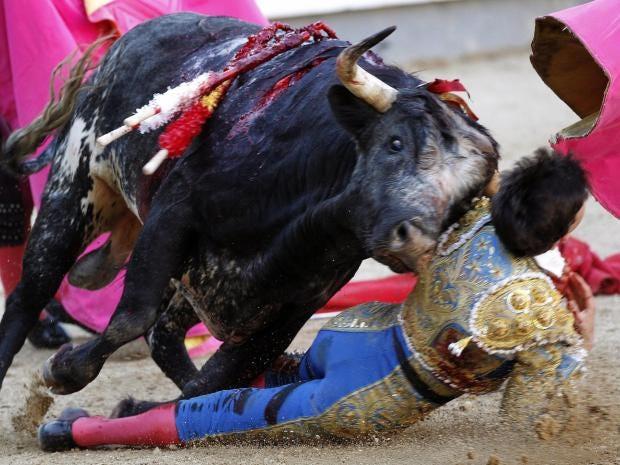 bull-matador.jpg