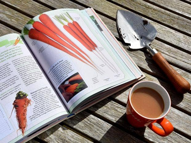 10 best gardening books The Independent
