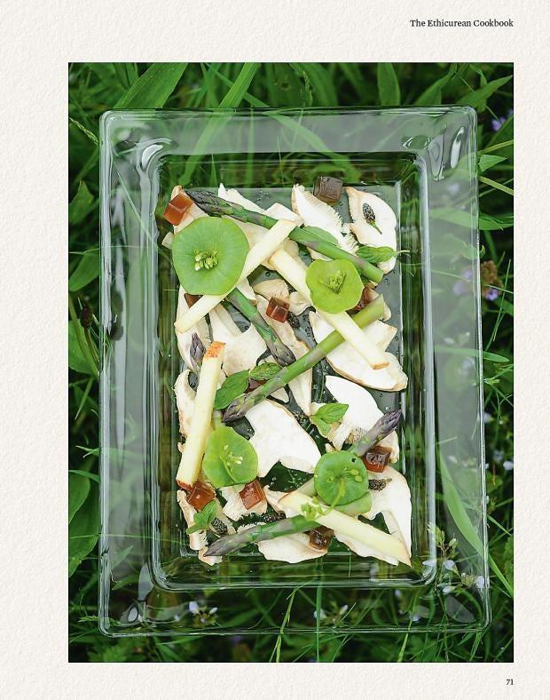 foraging-10.jpg