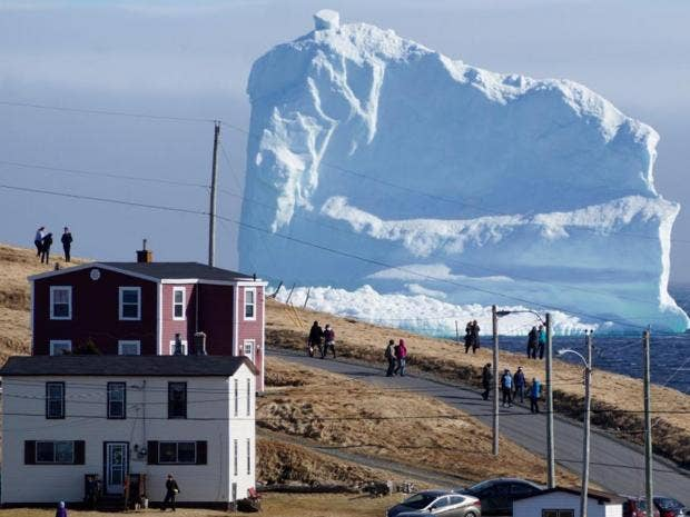 Image result for 'Iceberg Alley' is known for its floating bergs, but one giant iceberg has set up home just off the Newfoundland coast