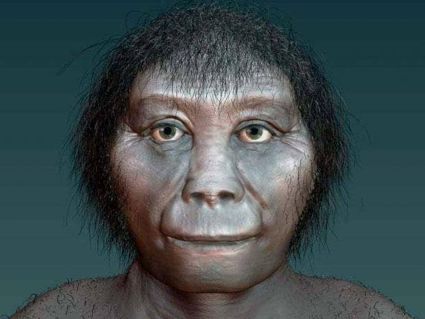 Hobbits of Indonesia Came From Africa, Says Science
