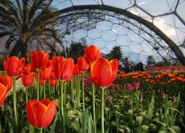 Best places to visit in England from ghost tours to country pubs. Spring is  in full bloom at the Eden Project ...