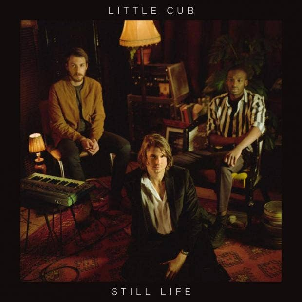 Image result for little cub still life