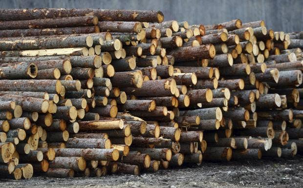 canadian-softwood-lumber.jpg
