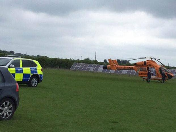 Zoo in cambridgeshire evacuated after keeper killed by tiger the zoo in cambridgeshire evacuated after keeper killed by tiger fandeluxe Gallery