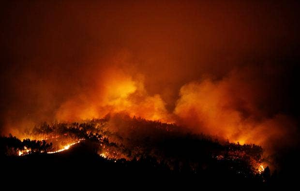Картинки по запросу Wildfires kill dozens in central Portugal