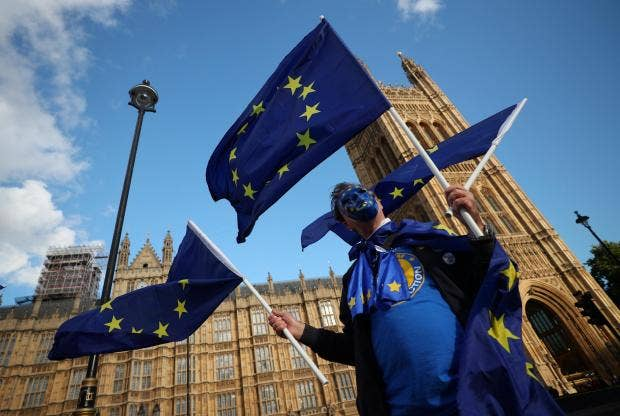 brexit-eu-demonstrator-protest-parliament.jpg