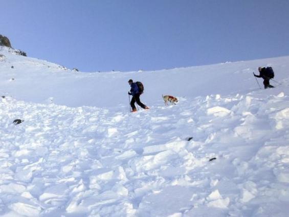 Bạn gái tử nạn trong lở tuyết, nhà leo núi nổi tiếng tự sát - Ảnh 1.