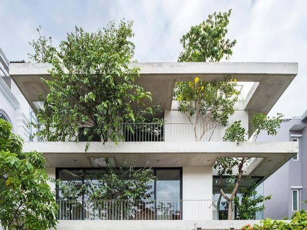 amazing home architecture. House for Trees  The amazing homes in Vietnam where plants grow through the floor