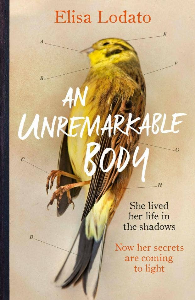 Image result for An Unremarkable Body by Elisa Lodato