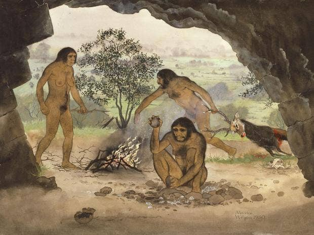 We Live In An Age Of Universal Investigation And Of: Homo Erectus: Early Humans Were Able To Speak And Crossed